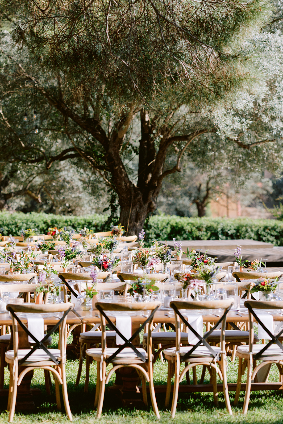 Getting Married in Cyprus?